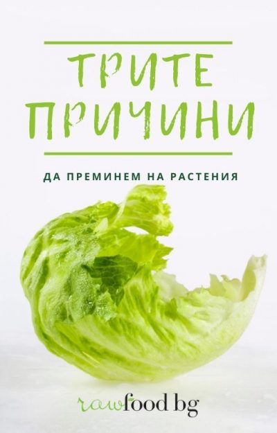 Copy of Brown and Green Photo of Vegetable Recipe Book Cover (1)