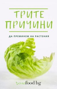 Copy of Brown and Green Photo of Vegetable Recipe Book Cover